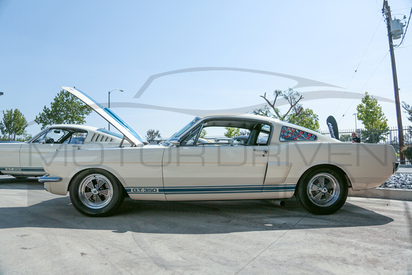 "1966 Shelby G.T.350 ""Carryover""."